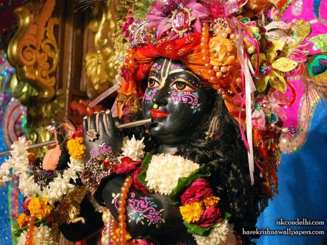 Sri Parthasarathi Close up Wallpaper (002)