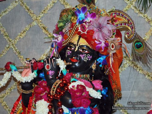Sri Parthasarathi Close up Wallpaper (006)
