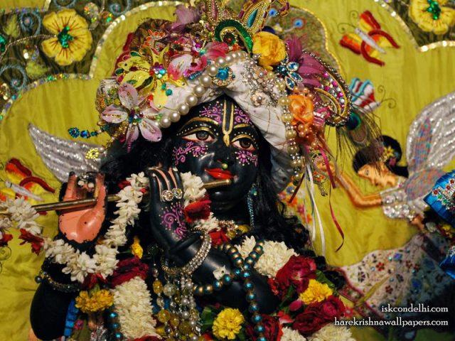 Sri Parthasarathi Close up Wallpaper (007)