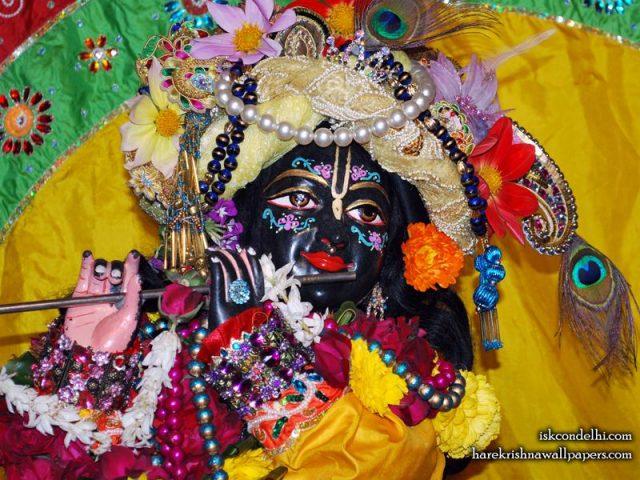 Sri Parthasarathi Close up Wallpaper (017)