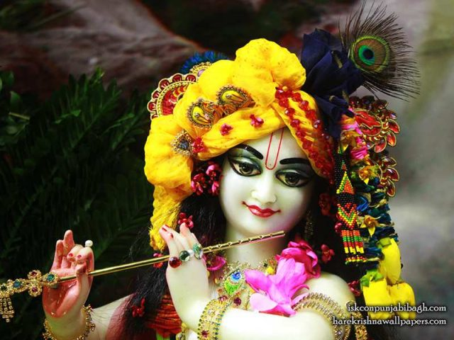 Sri Radhikaraman Close up Wallpaper (012)