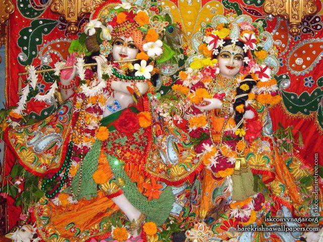Sri Sri Radha Giridhari Wallpaper (016)
