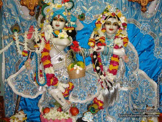 Sri Sri Radha Giridhari Wallpaper (022)