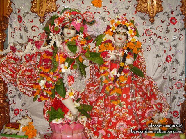 Sri Sri Radha Giridhari Wallpaper (031)