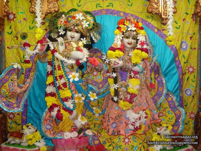 Sri Sri Radha Giridhari Wallpaper (033)