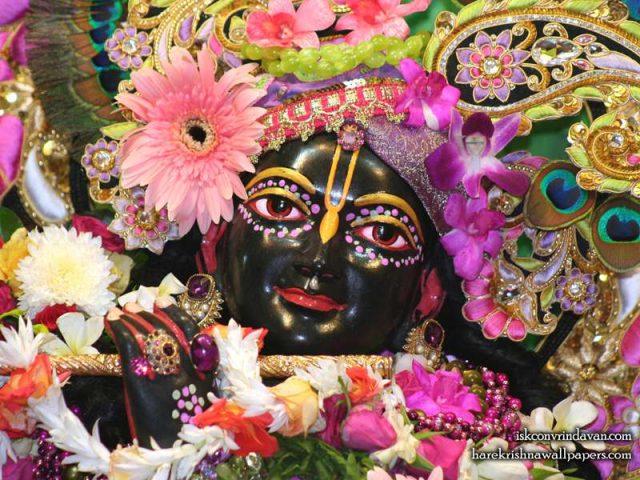 Sri Shyamsundar Close up Wallpaper (011)