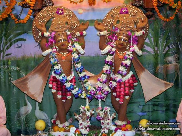 Sri Sri Gaura Nitai Wallpaper (084)