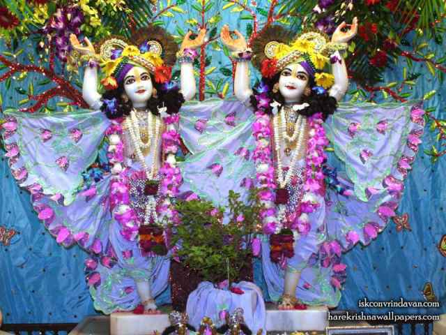 Sri Sri Gaura Nitai Wallpaper (091)
