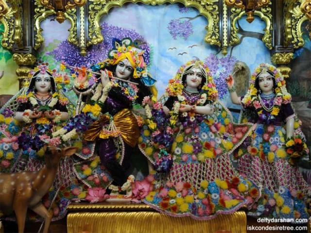 Sri Sri Radha Gopinath Lalita Vishakha Wallpaper (001)