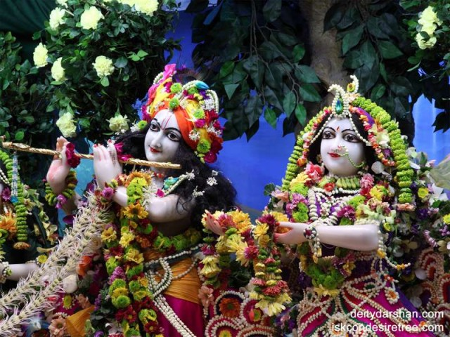 Sri Sri Radha Gopinath Close up Wallpaper (015)