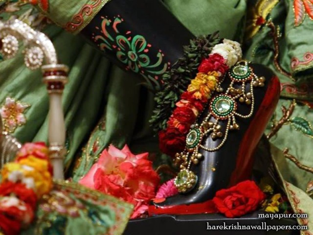 Sri Madhava Feet Wallpaper (001)