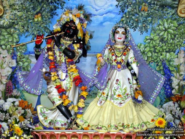 Sri Sri Radha Shyamsundar Wallpaper (001)