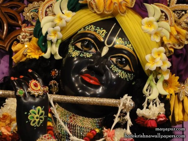 Sri Madhava Close up Wallpaper (002)