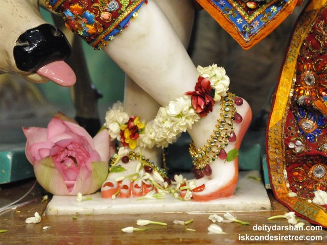 Sri Gopinath Feet Wallpaper (003)