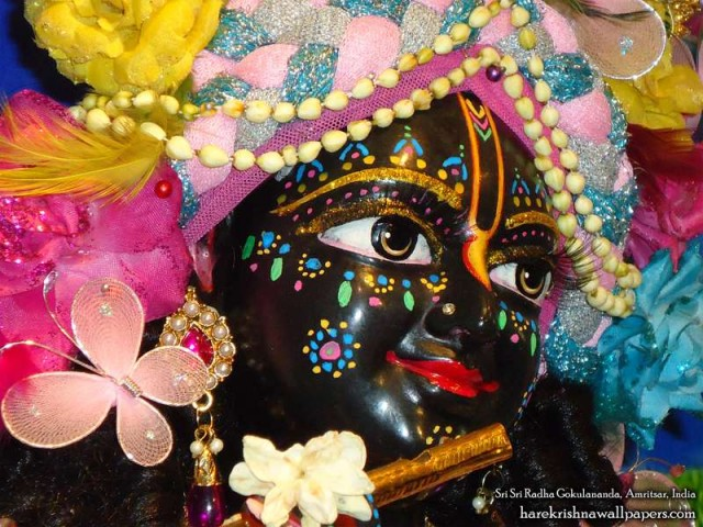 Sri Gokulananda Close up Wallpaper (004)