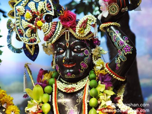 Sri Gopal Close up Wallpaper (004)
