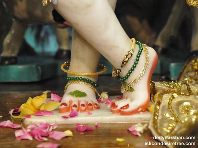 Sri Gopinath Feet Wallpaper (004)