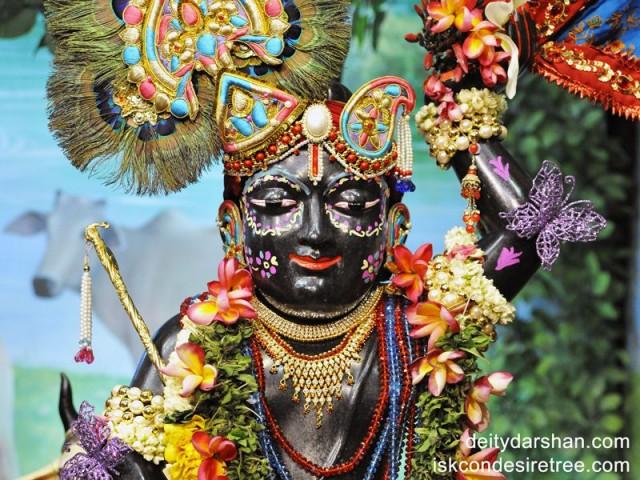 Sri Gopal Close up Wallpaper (005)