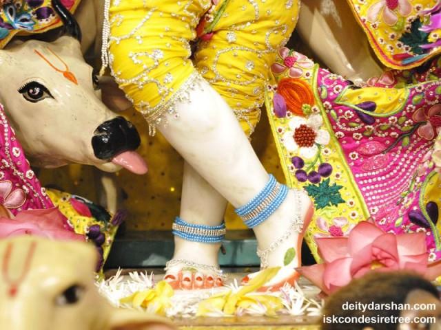 Sri Gopinath Feet Wallpaper (005)