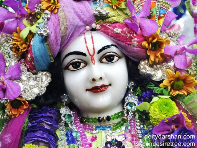 Sri Nitai Close up Wallpaper (005)