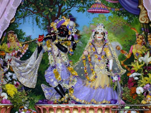 Sri Sri Radha Shyamsundar Wallpaper (005)