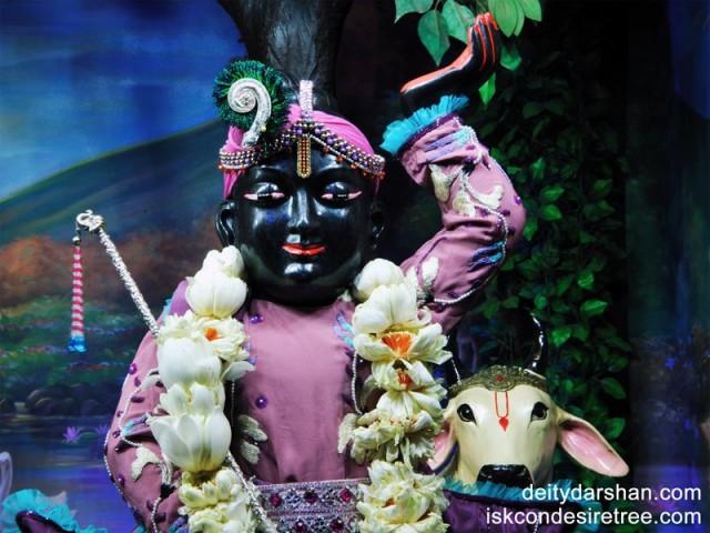 Sri Gopal Close up Wallpaper (006)