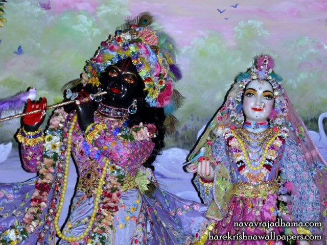 Sri Sri Radha Shyamsundar Close up Wallpaper (008)