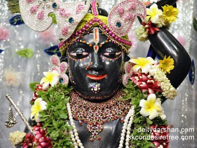 Sri Gopal Close up Wallpaper (011)