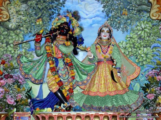 Sri Sri Radha Shyamsundar Wallpaper (014)