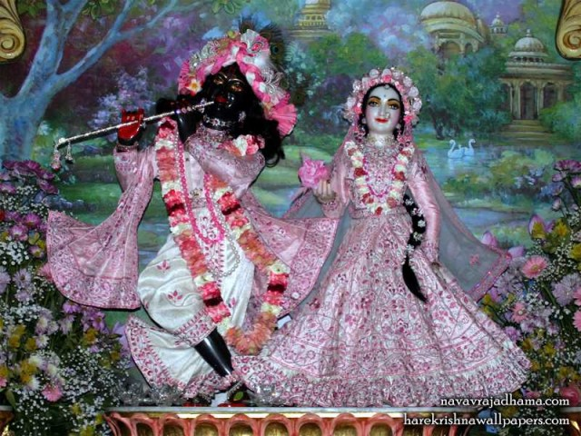 Sri Sri Radha Shyamsundar Wallpaper (015)