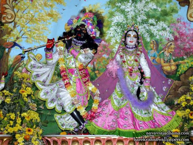 Sri Sri Radha Shyamsundar Wallpaper (017)