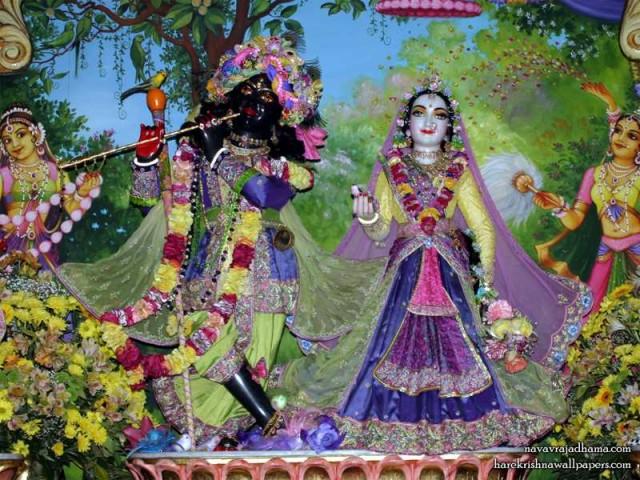 Sri Sri Radha Shyamsundar Wallpaper (018)