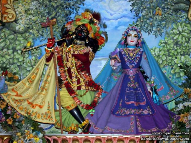 Sri Sri Radha Shyamsundar Wallpaper (019)