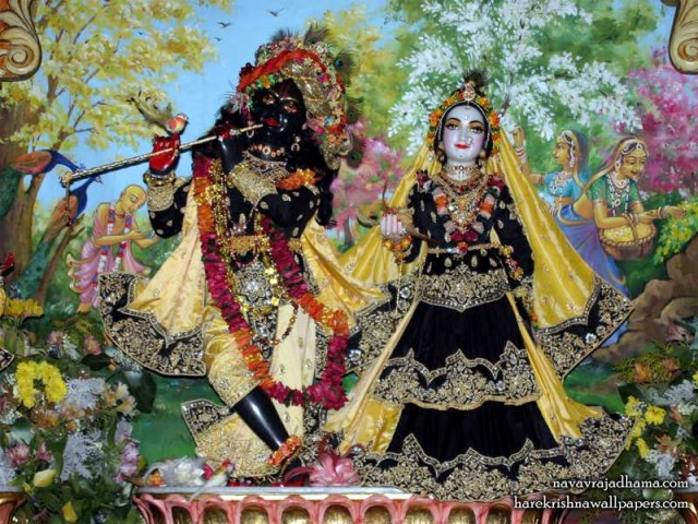 Sri Sri Radha Shyamsundar Wallpaper (020)