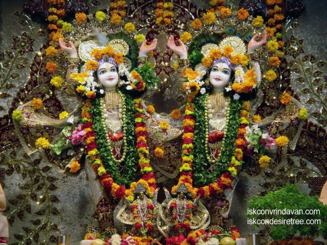 Sri Sri Gaura Nitai Wallpaper (049)