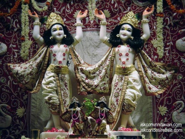 Sri Sri Gaura Nitai Wallpaper (056)