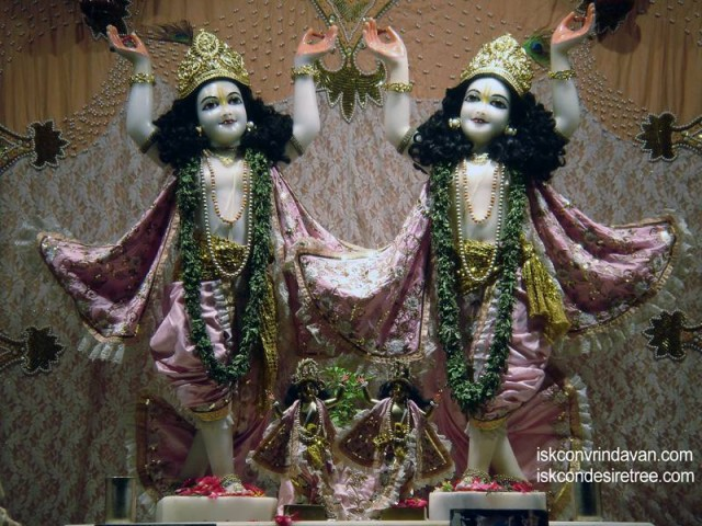 Sri Sri Gaura Nitai Wallpaper (058)
