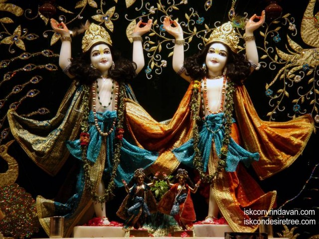 Sri Sri Gaura Nitai Wallpaper (064)