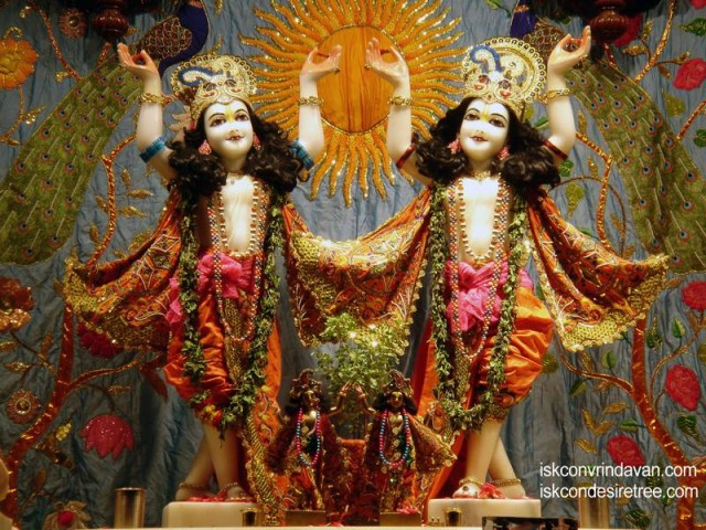 Sri Sri Gaura Nitai Wallpaper (065)