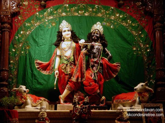 Sri Sri Krishna Balalram Wallpaper (067)