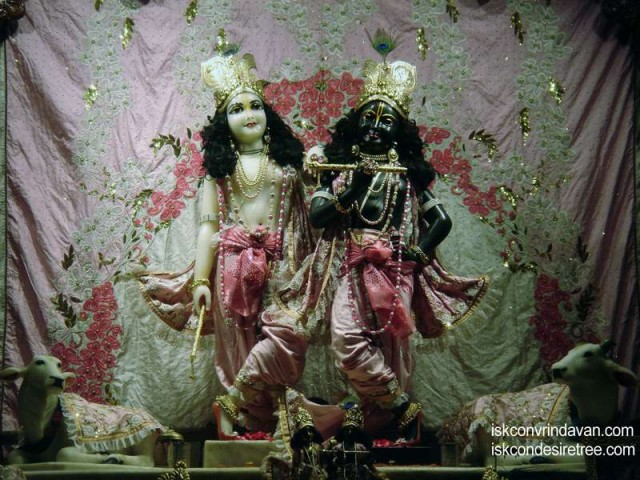 Sri Sri Krishna Balalram Wallpaper (068)