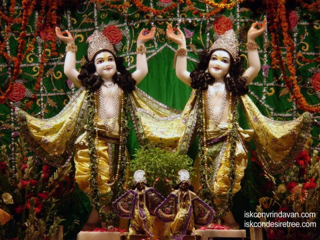 Sri Sri Gaura Nitai Wallpaper (079)