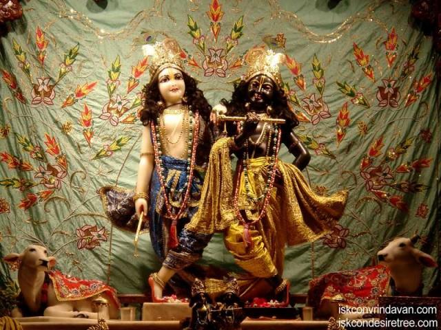 Sri Sri Krishna Balaram Wallpaper (084)