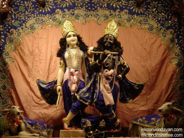 Sri Sri Krishna Balaram Wallpaper (089)