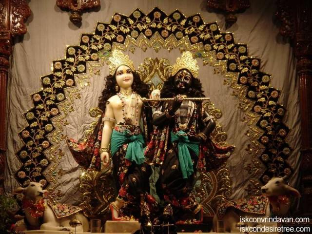 Sri Sri Krishna Balaram Wallpaper (097)