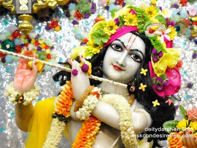 Sri Gopinath Close up Wallpaper (126)