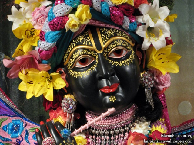 Sri Nilamadhava Close up Wallpaper (001)