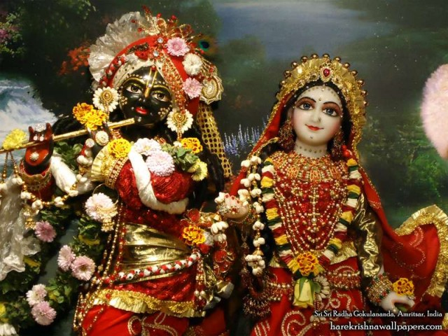Sri Sri Radha Gokulananda Close up Wallpaper (002)