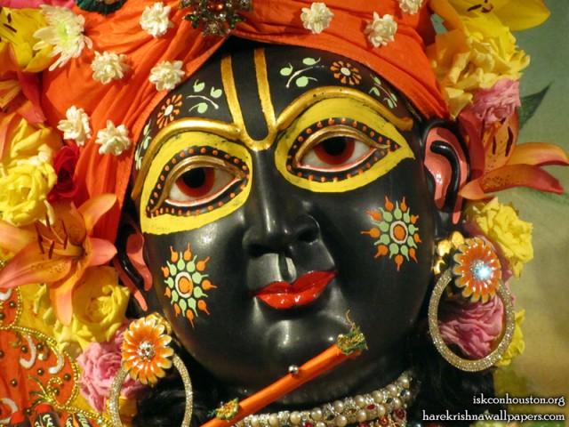 Sri Nilamadhava Close up Wallpaper (003)