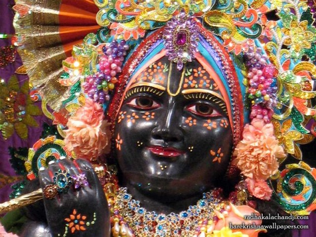 Sri Kalachanda Close up Wallpaper (004)